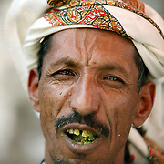 A Yemeni man chews qat, a leafy narcotic almost universally chewed by Yemenis, in the village of Shabam.