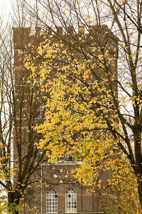 Nederland, Den Bosch, 20101106..De watertoren in Den Bosch zichtbaar achter een half kale boom..Vaal gele bladeren aan de boom. De blaadjes van de bomen in de herfst. Het gouden licht schijnt door de bladeren.