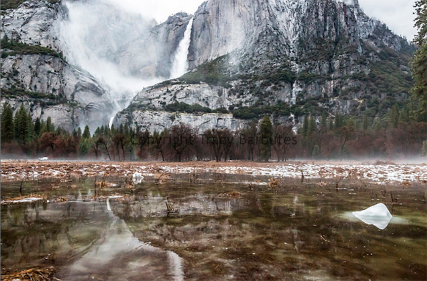 January 8, 2017 - Yosemite National Park, California, U.S - Yosemite Falls is reflected in a saturated Cooks Meadow. Yosemite Valley remains closed to the public due to flooding concerns. The Pohono Bridge gauge is recording at approximately 7 feet, and flood stage is at 10 feet. Flooding is anticipated later in the afternoon.