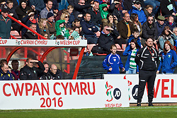 WREXHAM, WALES - Monday, May 2, 2016: The New Saints' manager Craig Harrison during the 129th Welsh Cup Final against Airbus UK Broughton at the Racecourse Ground. (Pic by David Rawcliffe/Propaganda)