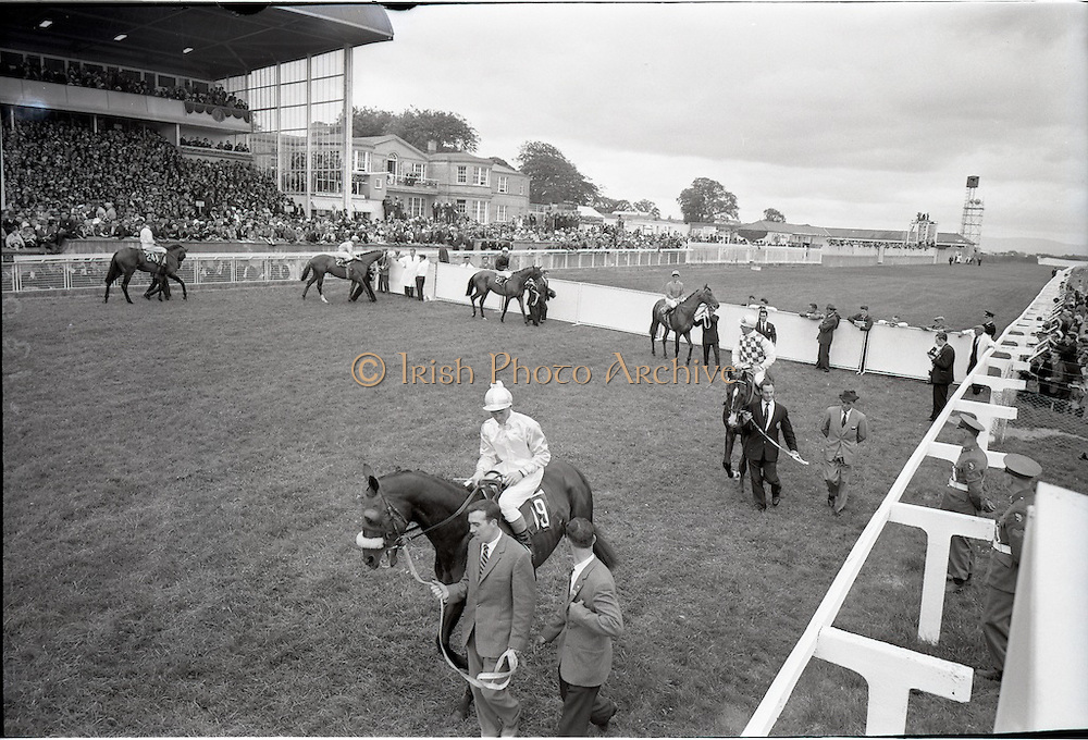 """30/06/1962 <br /> 06/30/1962<br /> 30 June 1962<br /> Irish Sweeps Derby at the Curragh Racecourse, Co. Kildare. general view of the  parade in fromt of the reserved enclosure for the Derby. The horses were shown and mounted on the course. Leading horse is """"Solpetre"""" with G. McGrath up, followed by """"Our Guile"""", E. Smith up; """"Arcor"""" N. Sellwood up; """"Tambourine II"""" R. Poincelet up; """"Sir Pat"""" W. Berg up and """"Borghese"""" G. Bougoure."""