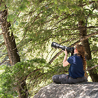 A high school student photographs osprey in the Lamar Canyon during the 2017 Yellowstone Photo Workshop in Yellowstone National Park, Wyoming, United States.