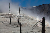 Yellowstone National Park Landscapes