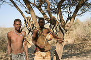 Africa, Tanzania, Lake Eyasi, Hadza hunters with bow and arrow. Hadza are a small tribe of hunter gatherers AKA Hadzabe Tribe August 2009