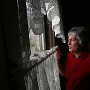 "Karen Johnson looks out from the kitchen window of her family farm house near Avoca, Iowa.  The older portion of the house, where Karen stands, was built in 1887.<br /> <br /> ""It's a place to look out and see what the weather looks like, so that we can plan our day,"" says Johnson.  <br /> <br /> It was also the window from where she spotted the orange glow of a barn fire in 2003 that destroyed 180 bales of hay.  The fire was caused by hay combustion.   Photo by David Peterson"