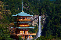 Japon, île de Honshu, région de Wakayama, Kumano Kodo, chemin du pelerinage, Nachi Taisha, Nachi San Seiganto pagode, les cascades de Nachi no Taki, site sacré classé au patrimoine mondial de l'UNESCO // Japan, Honshu, Wakayama, Kumano Kodo pilgrimage trail, Nachi no taki waterfall, and Nachi san Seiganto ji pagoda, holy site, world heritage of the UNESCO
