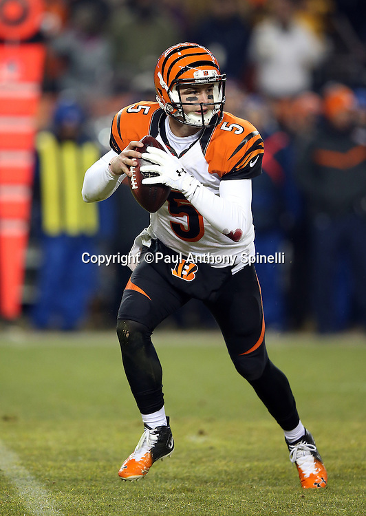 Cincinnati Bengals quarterback AJ McCarron (5) rolls to his right and throws a fourth quarter pass for a first down on third down during the 2015 NFL week 16 regular season football game against the Denver Broncos on Monday, Dec. 28, 2015 in Denver. The Broncos won the game in overtime 20-17. (©Paul Anthony Spinelli)