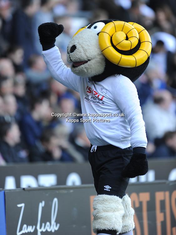 Derby Mascot Ramy, Derby County v Brentford, Sy Bet Championship, IPro Stadium, Saturday 11th April 2015. Score 1-1,  (Bent 92) (Pritchard 28)<br /> Att 30,050