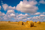 Bales and cumulus clouds<br />