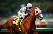 2016 Horse Racing