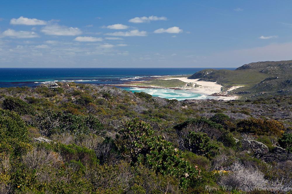 Africa, South Africa. Cape Landscape.