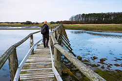 View of wooden footbridge leading to Aberlady Bay Nature Reserve on coast of Firth of Forth estuary in East Lothian, Scotland, UK