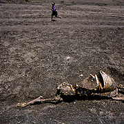 The Tigray region, which borders Eritrea, has suffered two severe droughts in the last 30 years with the last one in 1984-1985 causing more than a million deaths.  Years of war and conflict make the water crisis in the region even worse. Raya-Mehoni, Ethiopia.