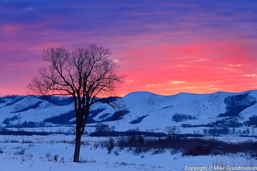 Dawn light on the hills of the Qu' Appelle Valley in winter<br /> near Craven<br /> Saskatchewan<br /> Canada