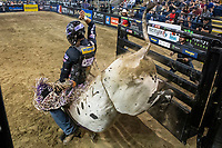 KELOWNA, CANADA - JULY 7:  Twenty-Nine year old Stetson Lawrence of Williston, ND exits the bull pen riding Pound Sand from Wild Hoggs / Corey Chmelnyk bulls during the championship round of the Monster Energy Pro Bull Riding tour on July 7, 2018 at Prospera Place in Kelowna, British Columbia, Canada.  (Photo by Marissa Baecker/Shoot the Breeze)  *** Local Caption ***
