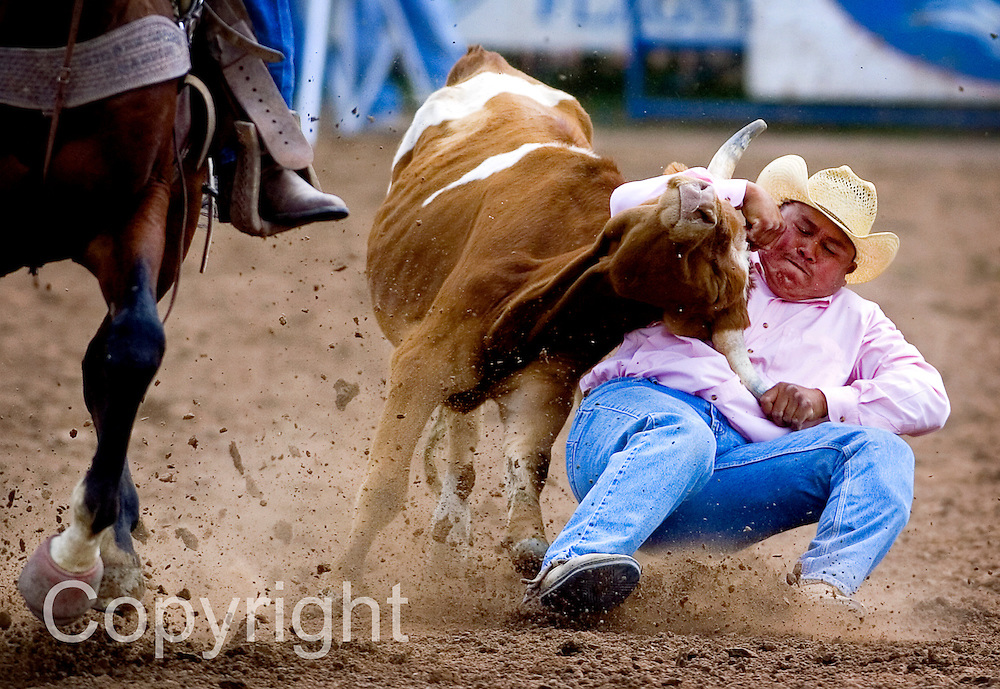 090907      Brian Leddy.Hollis Jodie of Winslow, Ariz. takes down calf during Sunday's Navajo Nation Indian Rodeo in Window Rock. Jodie won the event with a time of 5.1 seconds and took home a fifth in the average on three head category. .