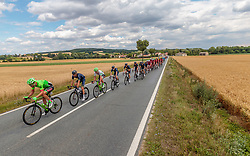 04.07.2017, Pöggstall, AUT, Ö-Tour, Österreich Radrundfahrt 2017, 2. Etappe von Wien nach Pöggstall (199,6km), im Bild das Peloton // the Peloton during the 2nd stage from Vienna to Pöggstall (199,6km) of 2017 Tour of Austria. Pöggstall, Austria on 2017/07/04. EXPA Pictures © 2017, PhotoCredit: EXPA/ JFK