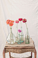&quot;Find your true self in the garden of improvisation...&quot;<br />