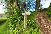 Drover's Trail footpath and bridleway at West Luccombe in Exmoor National Park near Allerford, Somerset, UK