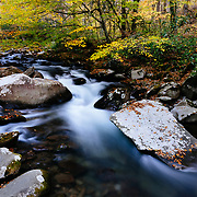 Rushing water cascading down one of many beautiful streams in the Great Smoky Mountains National Park, Tennessee.