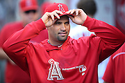 ANAHEIM, CA - AUGUST 21:  Albert Pujols #5 of the Los Angeles Angels of Anaheim adjusts his cap in the dugout while on the disabled list during the game against the Cleveland Indians on Wednesday, August 21, 2013 at Angel Stadium in Anaheim, California. The Indians won the game 3-1. (Photo by Paul Spinelli/MLB Photos via Getty Images) *** Local Caption *** Albert Pujols