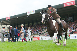 © Licensed to London News Pictures. 23/07/2018. Llanelwedd, UK. Winners of the 'Riding Cobs' event ride a lap of honour in the Main Ring  on the first day of the Royal Welsh Agricultural Show. The Royal Welsh Agricultural Show is hailed as the largest & most prestigious event of its kind in Europe. In excess of 200,000 visitors are expected this week over the four day show period. The first ever show was at Aberystwyth in 1904 and attracted 442 livestock entries. Photo credit: Graham M. Lawrence/LNP