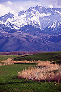 This view from the Chilik road is of the Zailiisky Alatau, a spur of the Tien Shan range, Kazkahsta