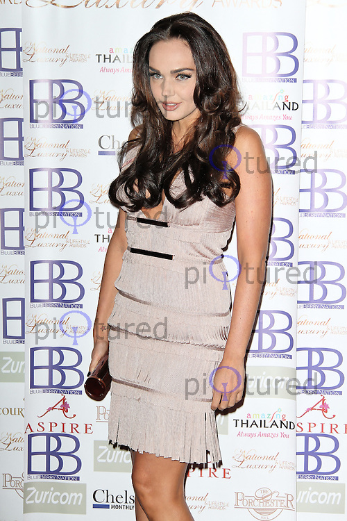 LONDON - MARCH 17: Tamara Ecclestone attends the National Luxury & Lifestyle Awards at the Porchester Hall, London, UK. March 17, 2012. (Photo by Richard Goldschmidt)