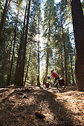 USA - Adventure Cycling Sierra Cascades Route