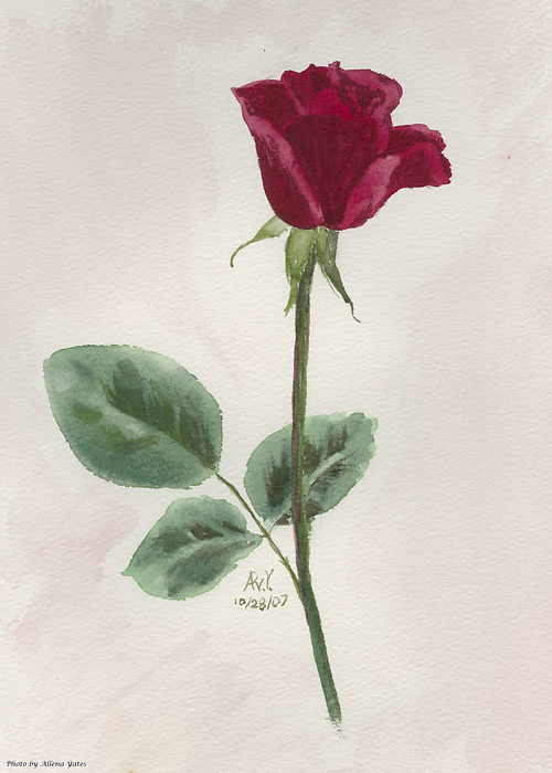 October Rose, watercolor on paper.  Originally 8x10 inches.