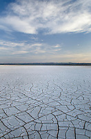 Patterns of cracked mud on dry lakebed of Harney Lake, Malheur National Wildlife Refuge, Oregon