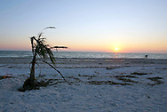 An autumn sunset on the beach on Sanibel Island, Florida.