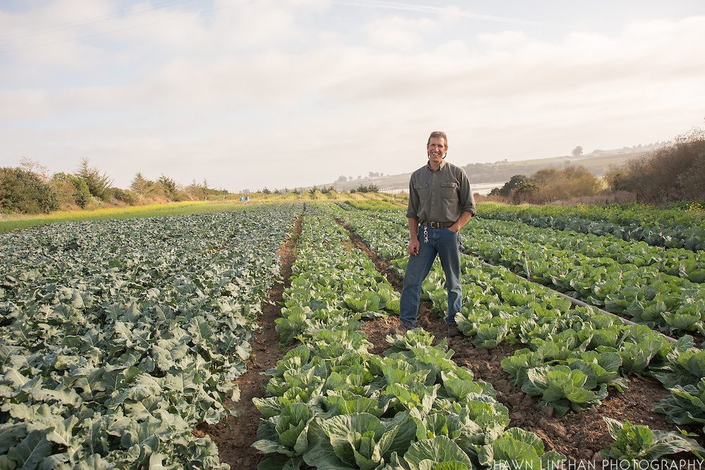 Steve Pederson, owner of High Ground Organic Farm in Watsonville, CA.