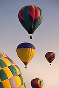 A variety of colorful hot air balloons in flight at sunrise.