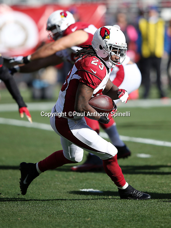Arizona Cardinals running back Chris Johnson (23) runs the ball in the first quarter during the 2015 week 12 regular season NFL football game against the San Francisco 49ers on Sunday, Nov. 29, 2015 in Santa Clara, Calif. The Cardinals won the game 19-13. (©Paul Anthony Spinelli)