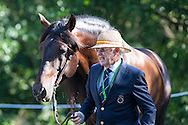 Juan Robles Marchena, (ESP), Cepellon, Fermentado, Fresado, Tensor, Velero XI - Horse Inspection Driving - Alltech FEI World Equestrian Games&trade; 2014 - Normandy, France.<br /> &copy; Hippo Foto Team - Leanjo de Koster<br /> 25/06/14