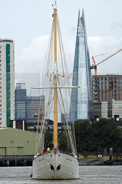 © Licensed to London News Pictures. 26/08/2015.  Four masted tall ship Santa Maria Manuela pseen with the Shard behind as she arrives in London. The 63 metre long tall ship is in London until next week. A number of tall ships have arrived in London today in rainy weather including the Chilean navy's four masted sail training ship Esmerelda. Other ships are heading to south east London for a tall ships event which is part of the Mayor of London's Totally Thames festival. Credit : Rob Powell/LNP