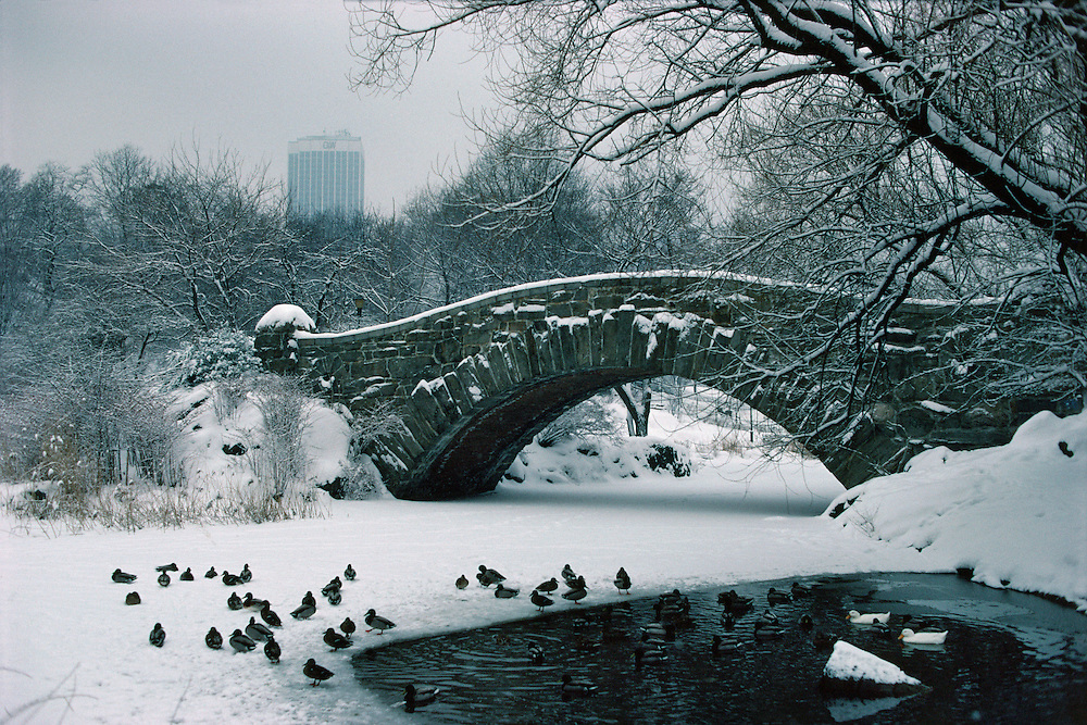 NYC, NY, Central Park, Gapstow Bridge, designed by Howard & Caudwell in 1896, Park designed by Frederick Law Olmsted and Calvert Vaux, Pond, Winter