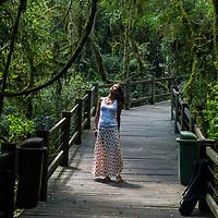 Parque Municipal do Pinheiro Grosso, Canela, Rio Grande do Sul, foto de Zé Paiva - Vista Imagens