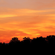 """Paint the Night Bright""<br />
