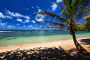 Hawaiian Beach Landscape No People
