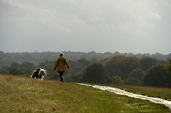 Dog walkers during Autumn in Richmond Park, London, United Kingdom. Friday, 25th October 2013. Picture by Ben Stevens / i-Images