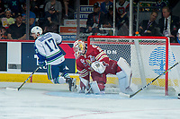 REGINA, SK - MAY 19: Evan Fitzpatrick #31 of Acadie-Bathurst Titan makes a save on a shot by Tyler Steenbergen #17 of Swift Current Broncos at the Brandt Centre on May 19, 2018 in Regina, Canada. (Photo by Marissa Baecker/CHL Images)