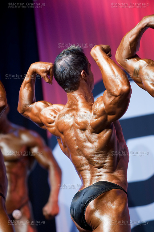 Nordic Championships 2009 - Bodybuilding, Classic bodybuilding and Bodyfitness, Royal Garden Trondheim, Norway..Nordisk mesterskap 2009 - Bodybuilding, Klassisk bodybuilding og Bodyfitness, Royal Garden Trondheim