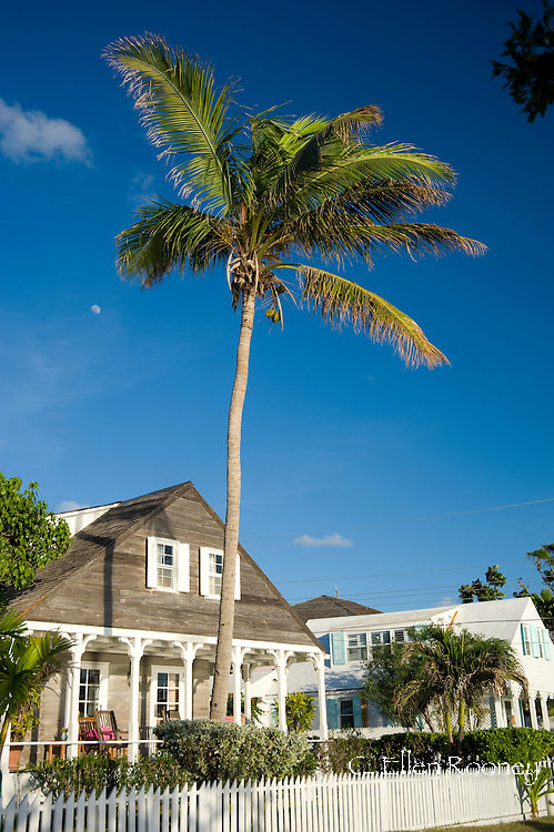 A palm tree growing over a colonial style house in Dunmore Town, Harbour Island, The Bahamas