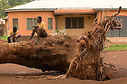 Teenage boys sit on a large tree trunk as they eat their lunch outside the Zogbeli Junior Secondary School in Tamale, Ghana on Thursday June 7, 2007..