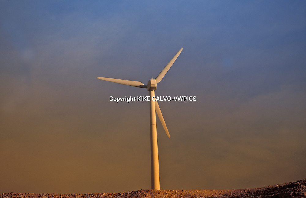 Windmills in la Muela area