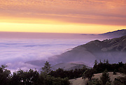 Sunset and fogbank at Gamboa Point<br /> Big Creek Reserve, Big Sur Coastline, CA