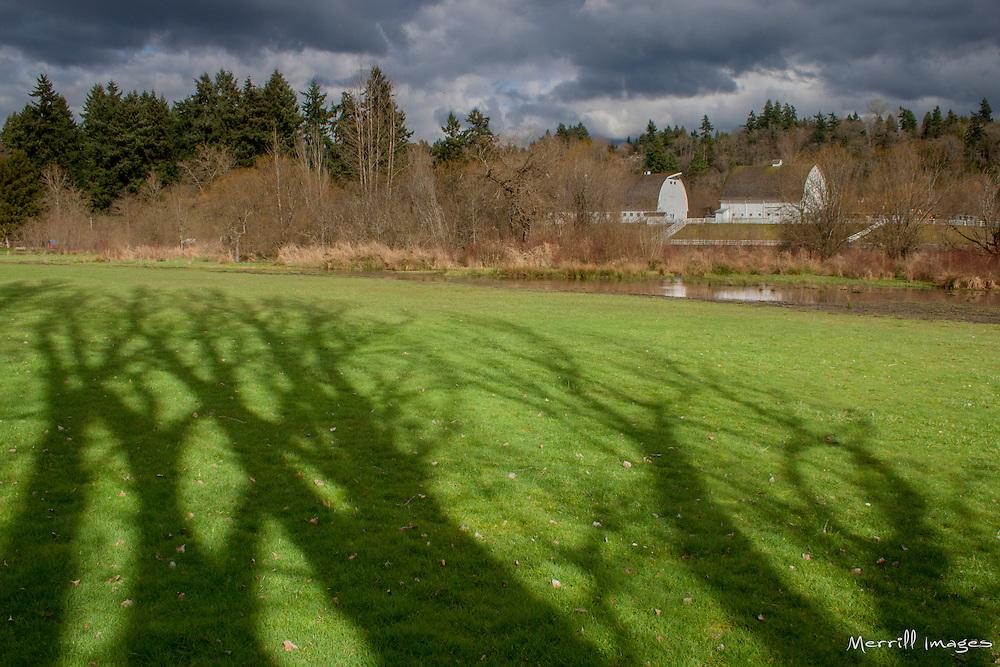 USA, Washington, Bellevue. Kelsey Creek Farm Park.