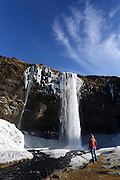 Ice covers the grasses around the Seljalandfoss waterfall in Southern Iceland